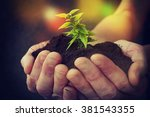 hand and plant | Shutterstock . vector #381543355
