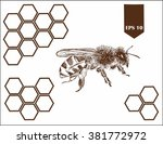 bee with honeycombs | Shutterstock .eps vector #381772972