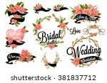 bridal shower lettering... | Shutterstock .eps vector #381837712