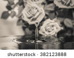drop of water and his... | Shutterstock . vector #382123888