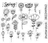 hand drawn zentangle  flower... | Shutterstock .eps vector #382244962