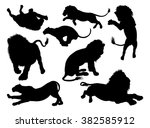 lion silhouettes. a set of male ...