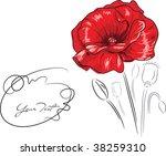 Red Poppy Flower   Freehand...