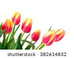 tulips red and yellow....   Shutterstock . vector #382614832