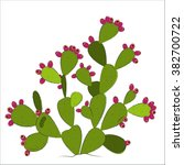 Prickly Pear Vector.