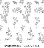 seamless pattern with herbs and ... | Shutterstock .eps vector #382727416