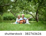 mature couple with guitar   in... | Shutterstock . vector #382763626