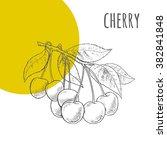 cherries vector freehand pencil ... | Shutterstock .eps vector #382841848
