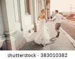 gorgeous wedding couple walking ... | Shutterstock . vector #383010382