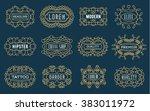 set of luxury insignias... | Shutterstock .eps vector #383011972