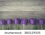 bunch of purple tulips on... | Shutterstock . vector #383129335
