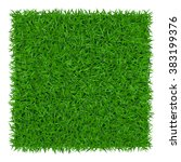 Green Grass Background. Lawn...