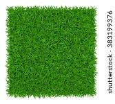 Green Grass Background. Lawn...
