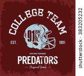 vintage american football... | Shutterstock .eps vector #383205232