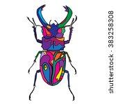 hand drawn bug vector...   Shutterstock .eps vector #383258308