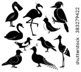 silhouettes of different birds... | Shutterstock .eps vector #383279422