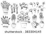 set of vector hand drawn line... | Shutterstock .eps vector #383304145