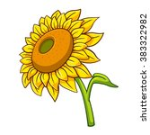Sunflower Cartoon Style  Vecto...