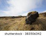 basalt stones at the cave near... | Shutterstock . vector #383506342