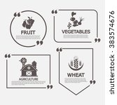 organic farm and vector labels... | Shutterstock .eps vector #383574676