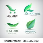 vector set of eco logos  leaves ... | Shutterstock .eps vector #383607352
