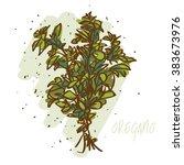 oregano herb | Shutterstock .eps vector #383673976