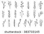 set of vector vintage floral... | Shutterstock .eps vector #383733145