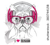 dog in glasses and headphones.... | Shutterstock .eps vector #383744158