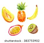tropical fruit on a white... | Shutterstock . vector #383753902