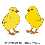 two small chicken on a white... | Shutterstock . vector #383779672