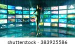 security system with internet... | Shutterstock . vector #383925586