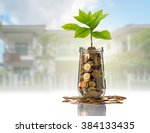 gold coins and seed in clear... | Shutterstock . vector #384133435