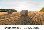 Golden Hay Bales In Countryside.