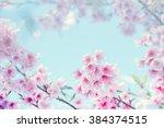 cherry blossom  selective focus ... | Shutterstock . vector #384374515