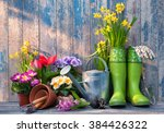 Gardening Tools And Flowers On...