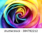 Macro Of Rainbow Rose Heart...