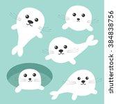 harp baby seal pup set. ice...