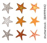 starfish set on a white... | Shutterstock .eps vector #384999442