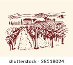 vineyard | Shutterstock .eps vector #38518024