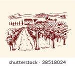 vineyard | Shutterstock .eps vector #38518024