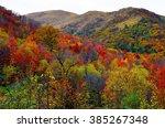 autumn forest | Shutterstock . vector #385267348