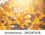 celso fall and fog  golden...   Shutterstock . vector #385287628