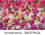 Beautiful Flowers Background...