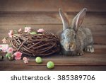 easter bunny  with easter eggs... | Shutterstock . vector #385389706