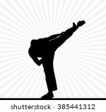 sport. karate illustartion | Shutterstock . vector #385441312