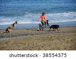 Stock photo photo lady walker at baker beach walking dogs 38554375