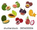 exotic tropical fresh papaya... | Shutterstock .eps vector #385600006