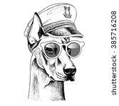 Doberman Portrait In A Captain...
