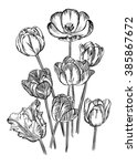 hand drawing of spring flowers  ... | Shutterstock .eps vector #385867672