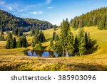 mountain summer landscape. pine trees on hillside meadow with wild flowers  near small lake  in mountains in morning light - stock photo
